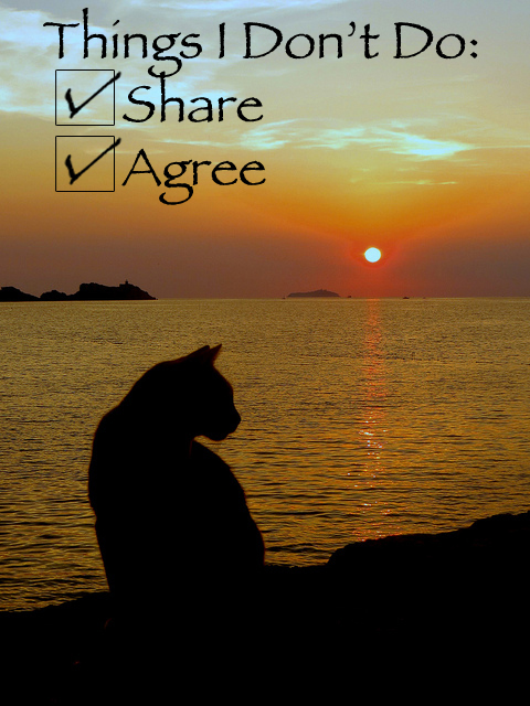 "silhouette of a cat against an ocean sunset with the overwritten title: ""things I don't do:"" and checkmarks next to ""Share"" and ""agree"""