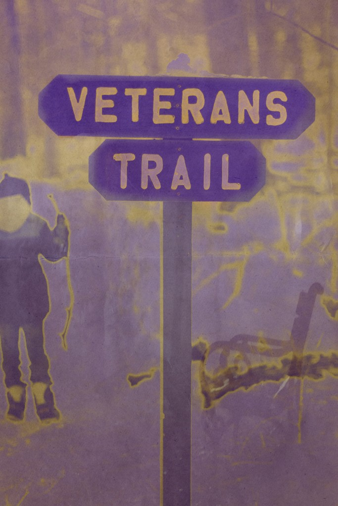 """Veterans Trail"" Artwork by Christine Cavalier"