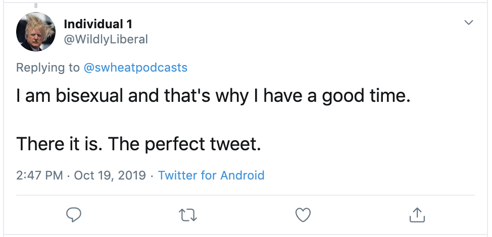 "A screenshot of a tweet. The tweet says ""I am bisexual and that's why I have a good time. There it is. The perfect tweet."""
